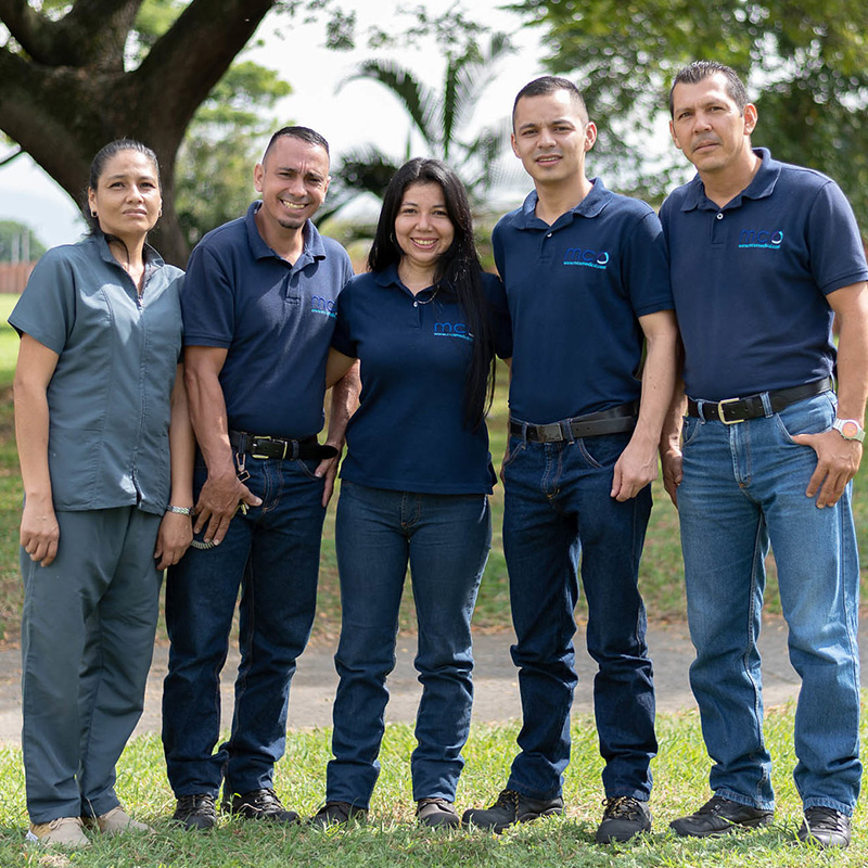 MCO - equipo
